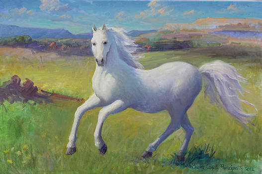 White horse by Gwen Carroll