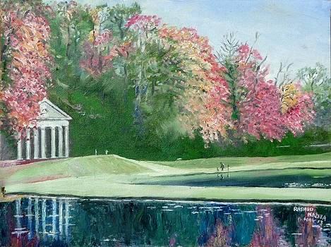 White House and ponds by Rashid Hamza