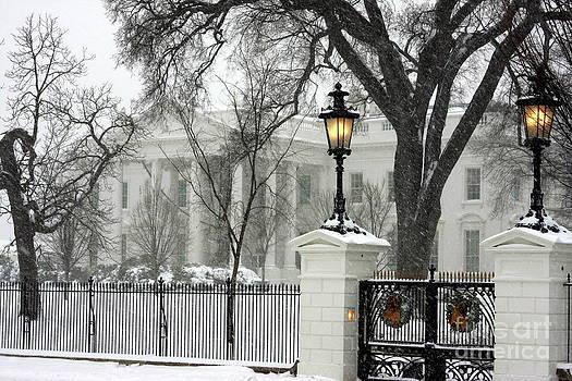 White House Christmas by Andrew Romer