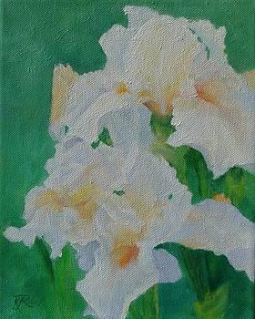 White Irises Original Oil Painting Iris Cluster Beautiful Floral Art by K Joann Russell
