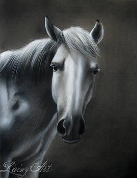 White Mare by Alaina Ferguson