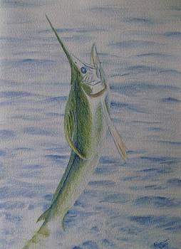 White Marlin by Joann Renner