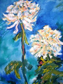 Patricia Taylor - White Mums on Blue Water