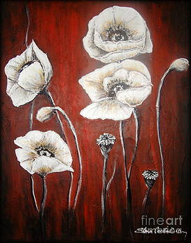White Poppies by Elena  Constantinescu