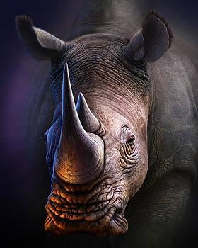 White Rhino by Jerry LoFaro