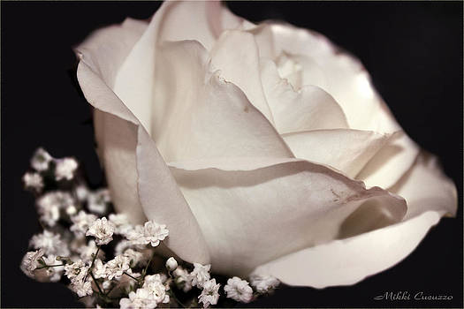 White Rose by Mikki Cucuzzo
