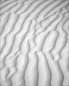 Jeff Brunton - White Sands 10