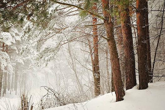 Jenny Rainbow - White Silence