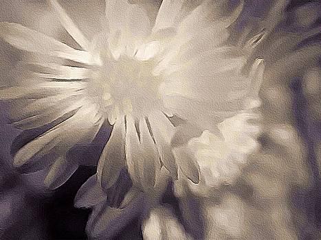 Susan Maxwell Schmidt - White