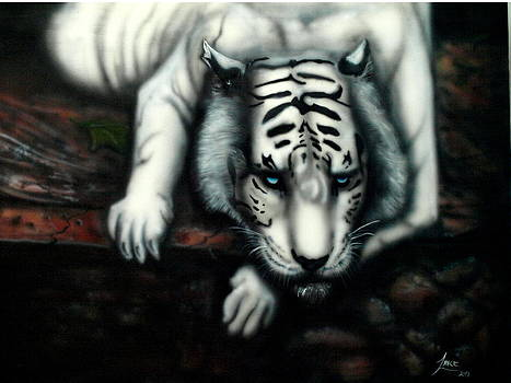 White Tiger by Lance James