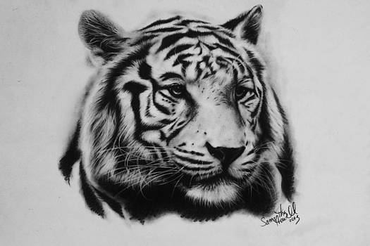 White Tiger by Samantha Howell
