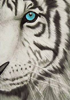 White Tiger's Eye by Tanya Arends