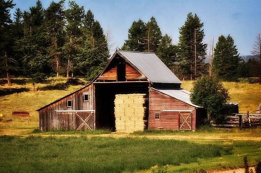 Marty Koch - Whitefish Barn