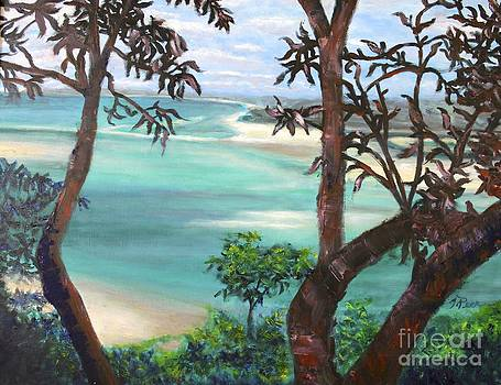 Whitsunday Blues by Tracey Peer