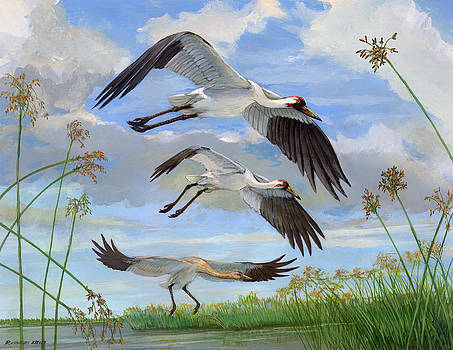 Whooping Cranes by ACE Coinage painting by Michael Rothman