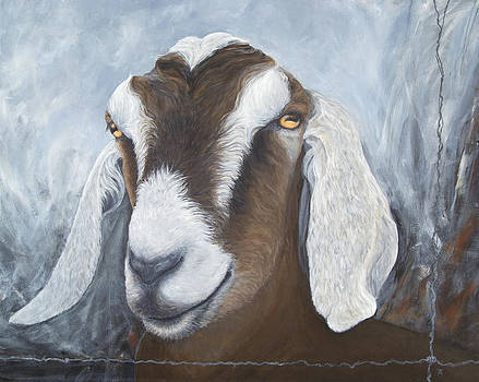 Why Do Sheep Go To Heaven and Goats Go To Hell? by Tracy Anderson