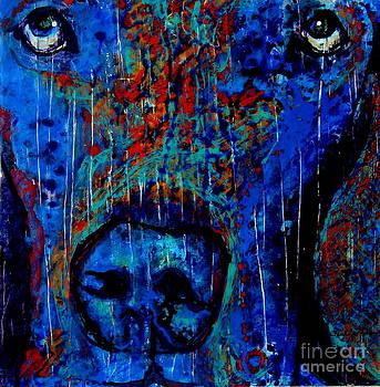 Why So Blue? by Freddie Lieberman