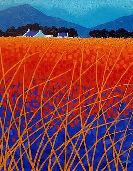Wicklow Meadow by John  Nolan