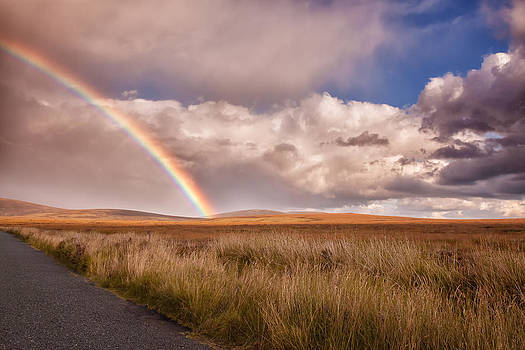 Wicklow Rainbow by India Blue photos