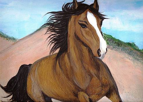 Wild and Free Horse by Noor Moghrabi