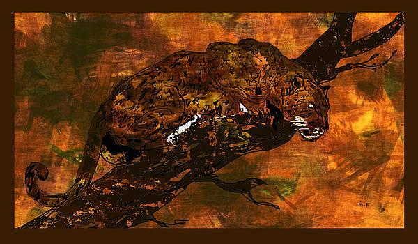 Wild Cat by Herbert French