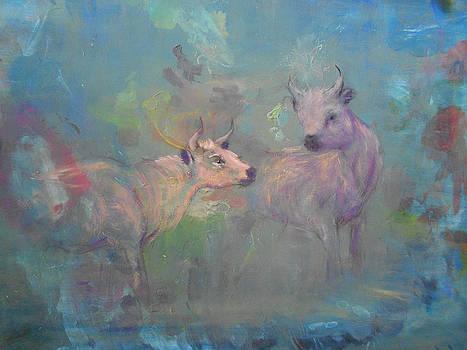 Wild Cattle by Rebecca Bourke