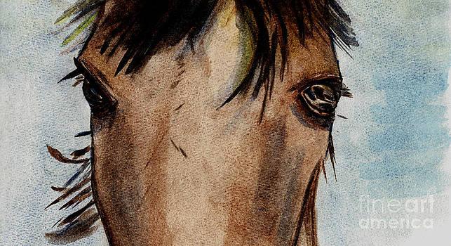 Wild Eyes by Elizabeth Briggs