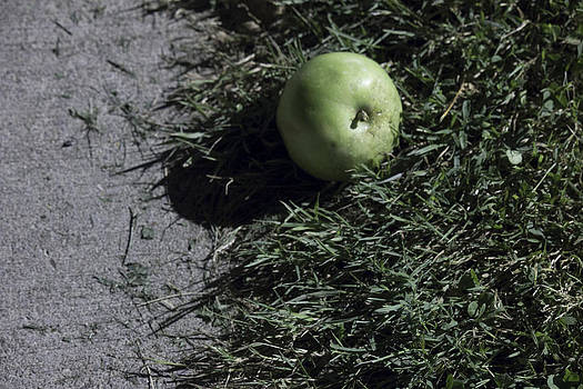 Wild Granny Smith by Alfredia Mealing
