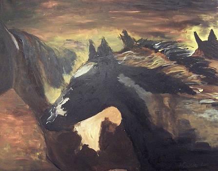 Wild Horses by Krista Ouellette