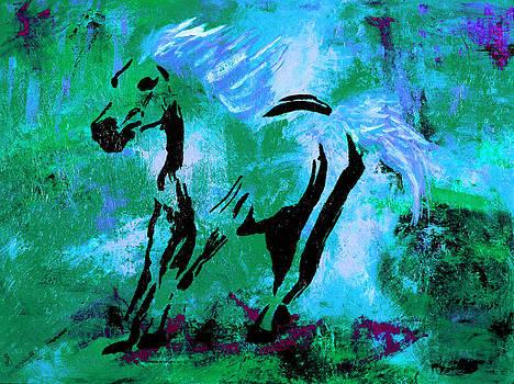 Wild Midnight by Nan Bilden