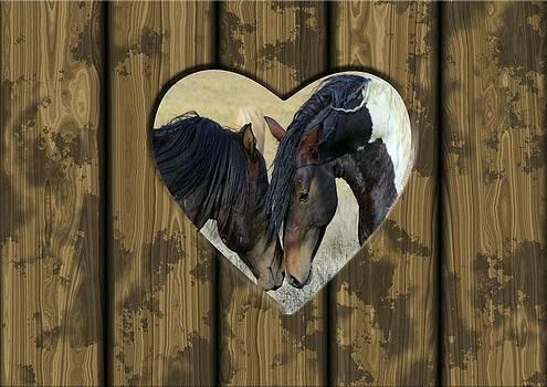 Wild Mustang Love by Jean Gebhard