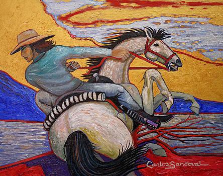 Wild Ride by Carlos Sandoval