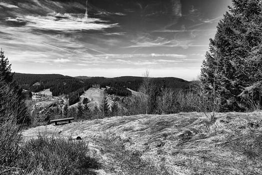 Wildemann Harz by Andreas Levi