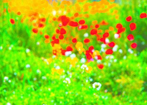 Wildflowers by Marina Kostina
