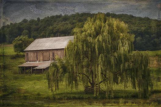 Willow Farm by Kathy Jennings