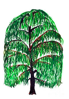Simon Bratt Photography LRPS - Willow tree painting isolated