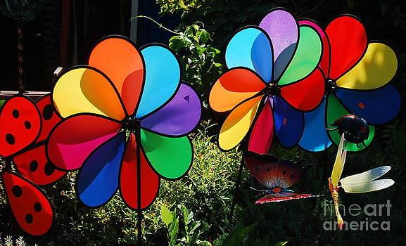 Joe Cashin - Wind spinners