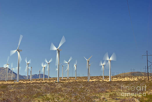 David  Zanzinger - Wind Turbines Green Energy Field