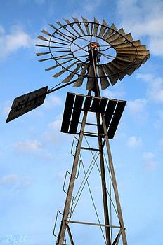 Christine Belt - Windmill at Kimmel Orchard