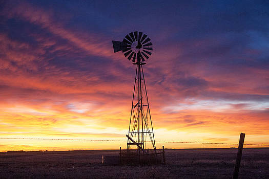 Windmill Dressed up by Shirley Heier