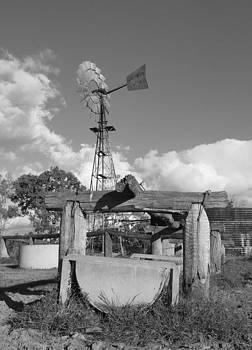 Windmill by Gordon  Grimwade