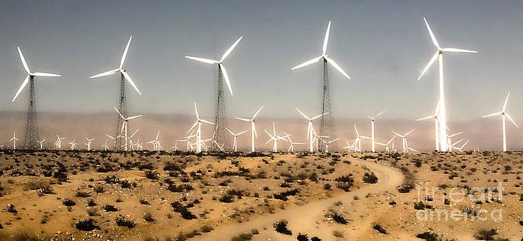 Gregory Dyer - Windmills