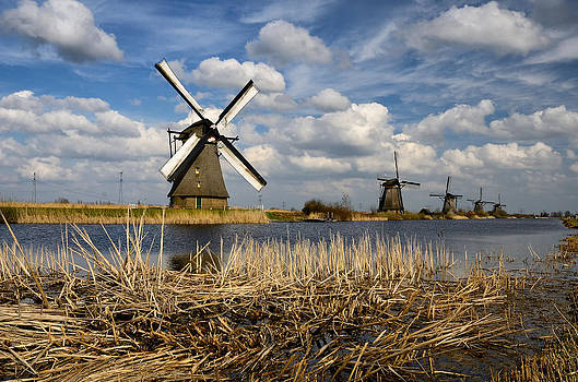 Windmills in Kinderdijk by Oleksandr Maistrenko
