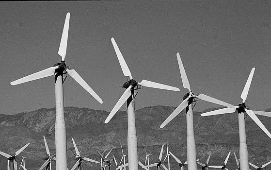 Windmills by Rebecca West