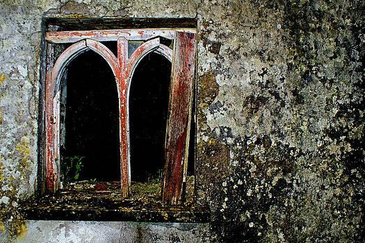 Window by M S B