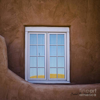 Dave Gordon - Window and Reflections