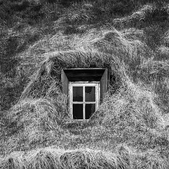 Window in nature by Frodi Brinks