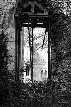 Diana Haronis - Window of Haunted Abbey