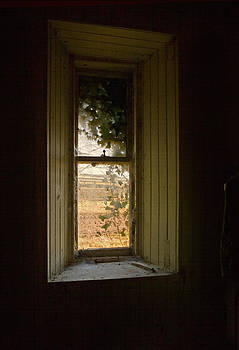 Liz  Alderdice - Window On The Past