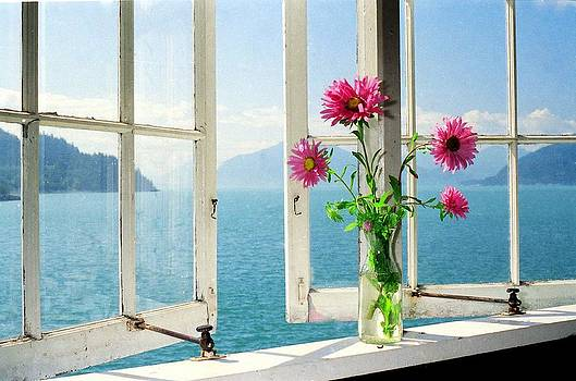Window on the Sound by Michael Dohnalek